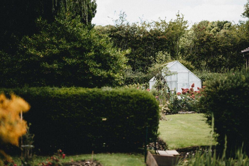 niewielka szklarnia w ogrodzie